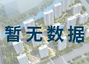 鲁能泰山9号品牌推广