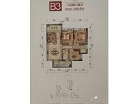 B3 三室两厅两卫 110.47